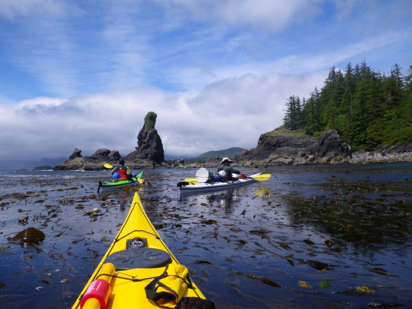 7-day bunsby islands kayaking overview | vancouver island