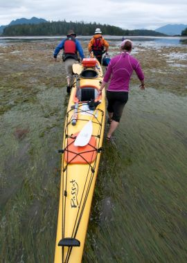 Custom Family Adventure Travel & Kayaking with West Coast Expeditions