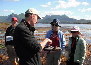 exploring intertidal life with guests