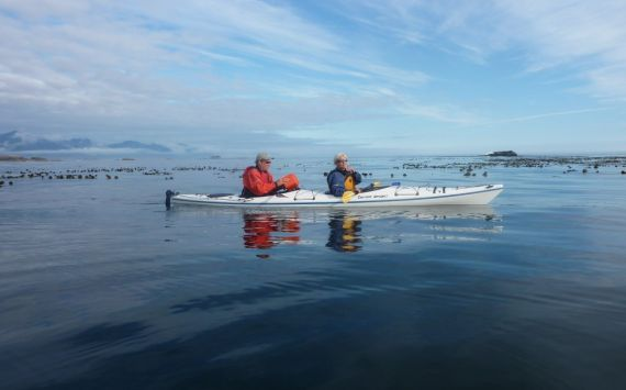 Guided Sea Kayaking Tours in the Coastal Waters of Vancouver Island